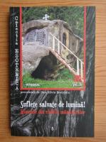 Dan Silviu Boerescu - Suflete salvate de lumina. Minunile din chiliile manastirilor (volumul 16)