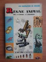 Anticariat: R. W. Burnett - Regne animal de l'amibe a l'homme