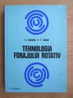 Anticariat: S. Seiceanu - Tehnologia forajului rotativ