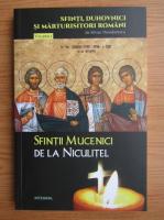 Silvian Theodorescu - Sfintii Mucenici dela Niculitel (volumul 9)