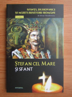 Silvian Theodorescu - Stefan cel Mare si Sfant (volumul 13)