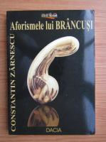 Constantin Zarnescu - Aforismele lui Brancusi