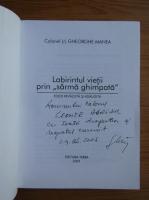 Gheorghe Manea - Labirintul vietii prin
