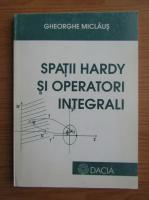 Gheorghe Miclaus - Spatii hardy si operatori integrali