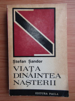 Anticariat: Stefan Sandor - Viata dinaintea nasterii