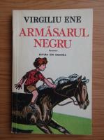 Anticariat: Virgiliu Ene - Armasarul negru