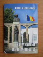 Anticariat: Aurel Nicolaescu - Plimbarea de dimineata