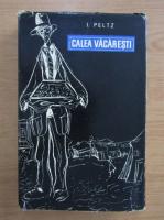 Anticariat: Isac Peltz - Calea Vacaresti