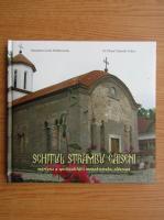 Anticariat: Cecilia Moldoveanu - Schitul Strambu Gaiseni, marturie a spiritualitatii monahismului vlascean