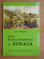 Gheorghe Nistorescu - De la plaiul Prahovei la Sinaia. Istorie si contemporaneitate