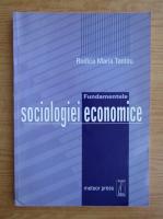 Rodica Maria Tantau - Fundamentele sociologiei economice