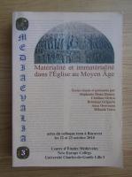 Stephanie Diane Daussy - Materialite et mmaterialite dans l'Eglise au Moyen Age