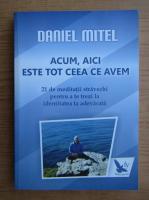 Anticariat: Daniel Mitel - Acum, aici este tot ceea ce avem