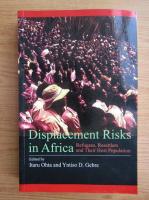 Itaru Ohta - Displacement risks in Africa