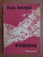Anticariat: Ion Hurjui - Poemia