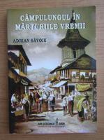 Adrian Savoiu - Campulungul in marturiile vremii