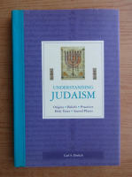 Carl S. Ehrlich - Understanding Judaism. Origins, beliefs, practices, holy texts, sacred places