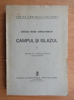 Petre Stanculescu - Campul si islazul (1938)