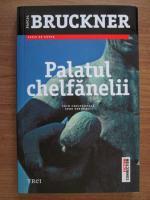 Anticariat: Pascal Bruckner - Palatul chelfanelii