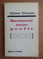 Mihaela Vlasceanu - Sectorul non-profit