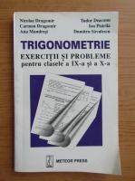 Nicolae Dragomir - Trigonometrie. Clasele IX-a si a X-a
