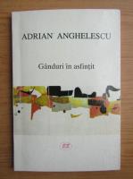 Anticariat: Adrian Anghelescu - Ganduri in asfintit