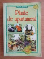 Anticariat: Elena Selaru - Plante de apartament