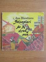 Ana Blandiana - Intamplari de pe strada mea