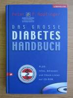 Anticariat: Peter Hopfinger - Das grosse Diabetes Handbuch