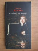 Julian Barnes - Nimicul de temut