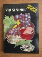 Jacques Yves Cousteau - Via si vinul