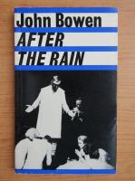 John Bowen - After the rain