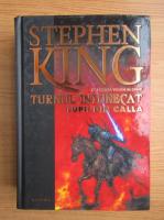 Stephen King - Turnul intunecat, volumul 5. Lupii din Calla