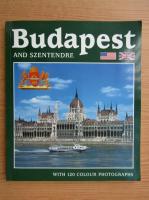 Anticariat: Budapest and Szentendre