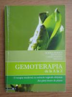 Anticariat: Sorina Soescu - Gemoterapia de la A la Z