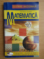 Ilie Petre Iambor - Matematica. Testare nationala