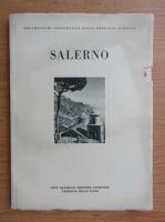 Anticariat: Salerno (monografii)