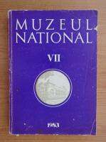 Anticariat: Muzeul National (volumul 7)