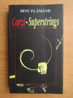 Anticariat: Dinu Flamand - Corzi Superstrings (editie bilingva)