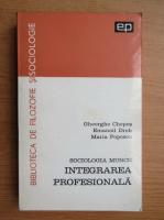 Gheorghe Chepes - Integrarea profesionala