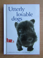 Anticariat: Utterly lovable dogs