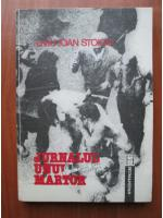 Anticariat: Liviu Ioan Stoiciu - Jurnalul unui martor