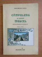 Anticariat: Gheorghe Chita - Campulung si judetul Muscel