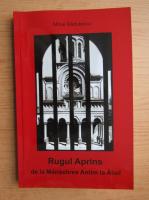 Mihai Radulescu - Rugul aprins. De la Manastirea Antim la Aiud