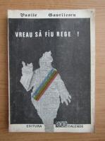 Anticariat: Vasile Gavrilescu - Vreau sa fiu rege