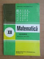 I. D. Ion - Matematica. Algebra. Manual pentru clasa a XII-a (1993)