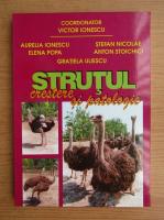 Anticariat: Victoria Ionescu - Strutul