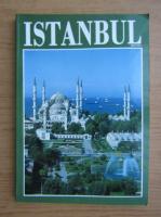 Anticariat: Yucel Akat - Istanbul