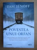 Anticariat: Pam Jenoff - Povestea unui orfan