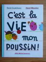 Rene Gouichoux - C'est la vie mon poussin!